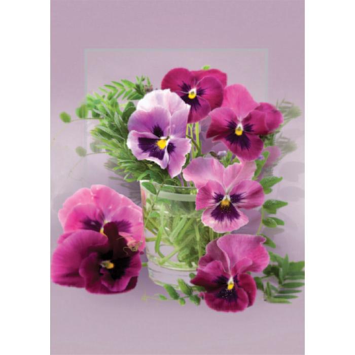 Onnitteluadressin kannessa on violetteja orvokkeja