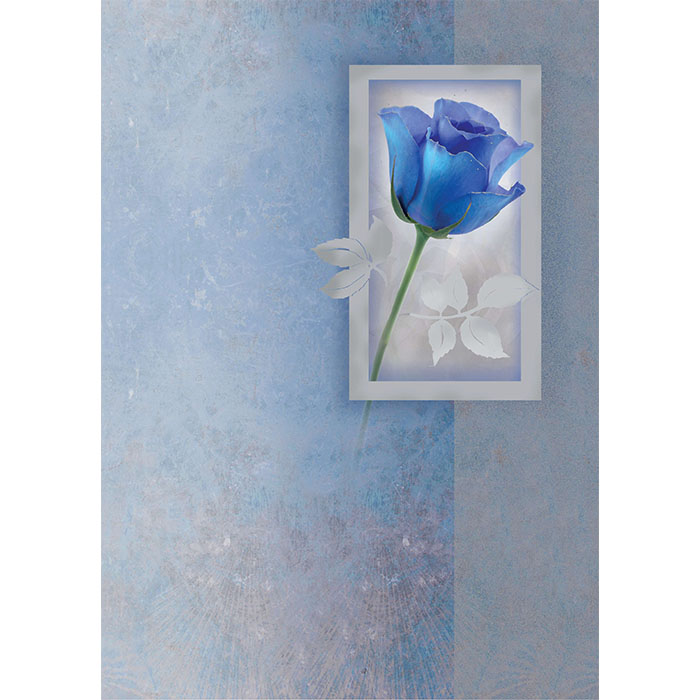 Sinisävyisessä kannessa on yksi sininen ruusu